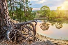 Un beau matin par la rivière Images stock