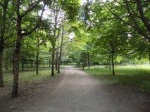 Un beau parc images stock