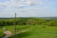 Un beau paysage avec une voiture blanche, l'herbe, une allée, des arbres ordonnés et une clairière Image stock