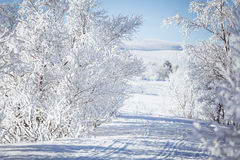 Un beau paysage blanc d'un jour d'hiver neigeux avec des voies pour le motoneige ou le traîneau de chien images stock