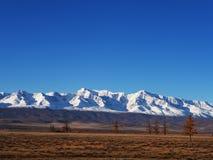 Un beau paysage d'automne avec un champ orange et crêtes de montagne couronnées de neige un jour ensoleillé photos stock