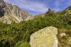 Un beau paysage de dolina de Mengusovska Haute montagne de Tatra images stock