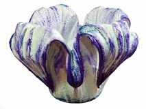 Un beau pot de fleurs fait main Images stock