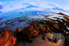 Un beau rivage avec un bon nombre de broun et de regard bleu Image stock