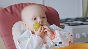 Un bebé que come el ciruelo en casa Foto de archivo