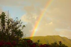 Un bel arc-en-ciel dans les îles au vent Images stock
