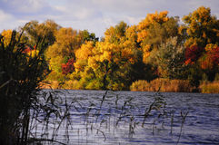 Un bel automne d'humeur Image libre de droits