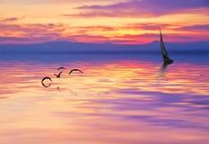 Un Belero in lago Immagini Stock Libere da Diritti