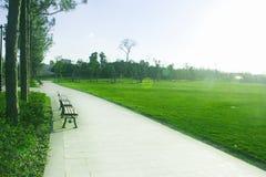 Un bello ambiente del parco Fotografie Stock Libere da Diritti
