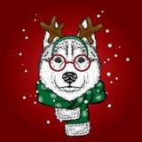 Un bello cane in un vestito ed in una sciarpa dei cervi antler Illustrazione di vettore Cucciolo di razza in vestiti ed accessori illustrazione vettoriale