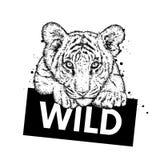 Un bello cucciolo di tigre Vector l'illustrazione per una cartolina o un manifesto, stampa per i vestiti ed accessori Tigre selva royalty illustrazione gratis