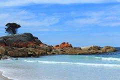 Un bello e giorno caldo alla baia di Binalong, Tasmania, Australia fotografie stock libere da diritti