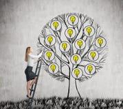 Un bello imprenditore sta scalando all'albero tirato con le lampadine Un concetto di nuove idee di affari per comincia su Sedere  Immagine Stock Libera da Diritti