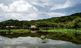 Un bello lago Immagine Stock