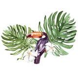 Un bello mazzo dell'acquerello con un tukan e le foglie di una palma, dei fiori o della plumeria Immagine Stock Libera da Diritti