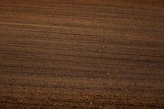 Un bello modello marrone su un campo in primavera Fondo astratto e strutturato immagini stock libere da diritti