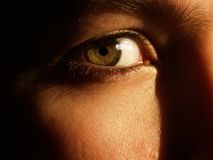 Un bello occhio verde Fotografia Stock