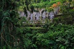 Un bello paesaggio in Bali Fotografia Stock Libera da Diritti