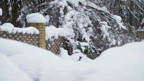 Un bello paesaggio di inverno, una vista di una casa di campagna innevata Il recinto e gli alberi sono tutto nella neve stock footage