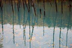 Un bello stagno blu nell'Hokkaido, Giappone Fotografia Stock