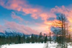 Un bello tramonto nelle alpi Paesaggio della montagna di inverno Immagini Stock Libere da Diritti