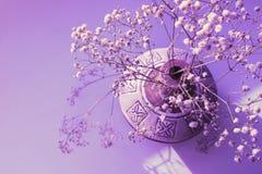 Un bello whith del vaso dell'argilla i fiori secchi Fotografia Stock Libera da Diritti