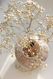 Un bello whith del vaso dell'argilla i fiori secchi Fotografia Stock