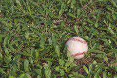 Un bianco ha usato il baseball sull'erba verde fresca Immagine Stock Libera da Diritti