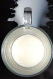Un bicchiere di latte Fotografia Stock