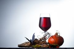 Un bicchiere di vino con le decorazioni per Halloween sulla tavola Fotografie Stock Libere da Diritti