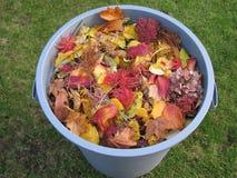Un bidone della spazzatura di plastica in pieno di giallo e delle foglie colte Immagine Stock Libera da Diritti