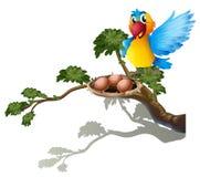 Un bird-watching il nido Fotografia Stock Libera da Diritti