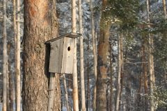 Un Birdhouse nella neve fotografia stock