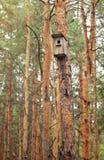 Un Birdhouse nella neve Fotografia Stock Libera da Diritti