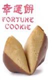 Un biscuit de fortune recouvert de chocolat Images stock