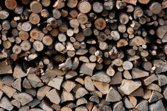 Un bois coupé Images stock