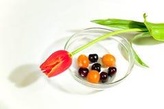 Un bol de cerise et de kumquat Photos stock