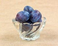 Un bol de petites prunes italiennes Image libre de droits