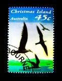 Un bollo stampato in Australia mostra un'immagine dell'uccello comune del noddy all'isola di Natale sul valore al centesimo 45 Immagini Stock Libere da Diritti