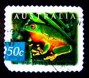 Un bollo stampato in Australia mostra un'immagine della rana di albero thighed arancia sul valore al centesimo 50 Immagini Stock