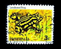 Un bollo stampato in Australia mostra un'immagine della rana di Corroboree sul valore al centesimo 3 Fotografia Stock Libera da Diritti