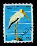 Un bollo stampato in Repubblica del Ciad mostra un'immagine dell'uccello dell'ibis Fotografie Stock Libere da Diritti