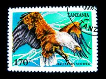 Un bollo stampato in Tanzania mostra un'immagine dell'uccello del vocifer del Haliaeetus Fotografie Stock Libere da Diritti