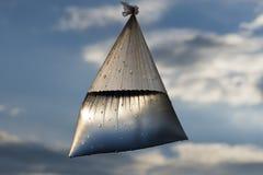 Un bolso del agua Fotografía de archivo libre de regalías