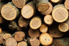 Un bon nombre de beau bois de chauffage dans la coupe Photos libres de droits