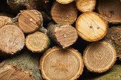 Un bon nombre de beau bois de chauffage dans la coupe Images stock