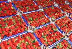 Un bon nombre de boîtes et de plateaux de la fraise rouge mûre à vendre Image libre de droits