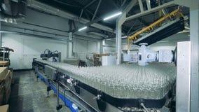 Un bon nombre de bouteilles en verre sur un convoyeur, production alcoolique clips vidéos