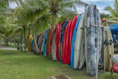 Un bon nombre de canoës pour la location photographie stock libre de droits