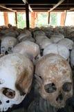 Un bon nombre de crânes humains Photos libres de droits